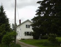 E Lansing Rd - Bancroft, MI